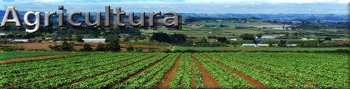 botonagricultura2