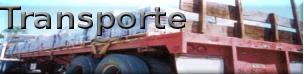 botontransporte2